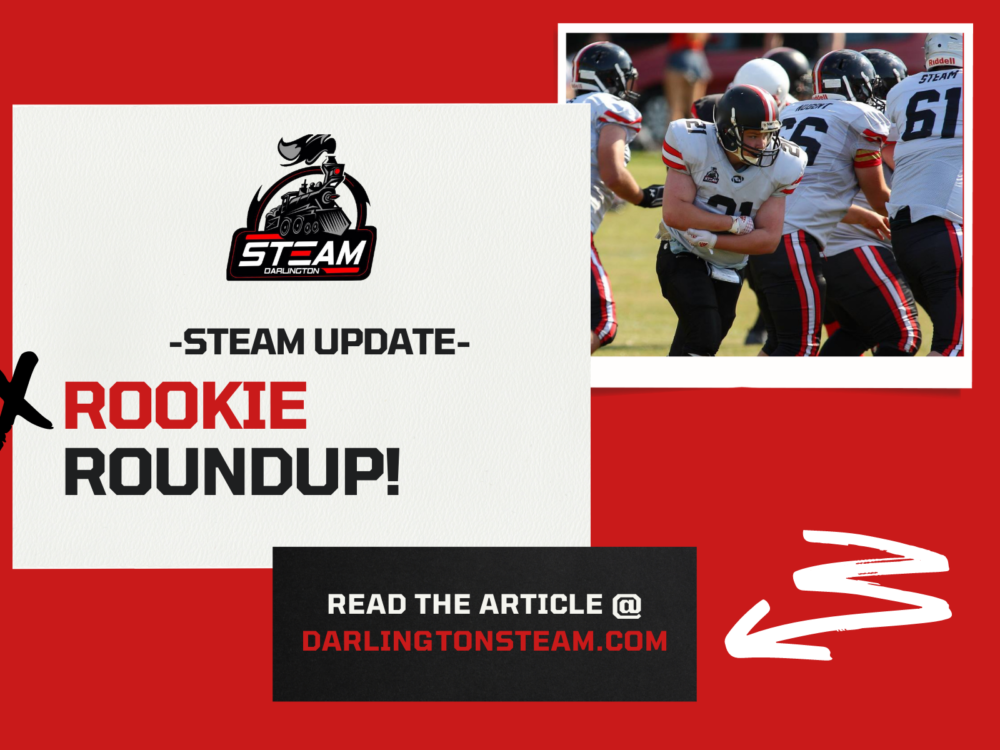 DS New Post Announcement Rookie Roundup